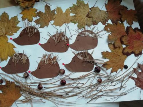 Co přinesl podzim